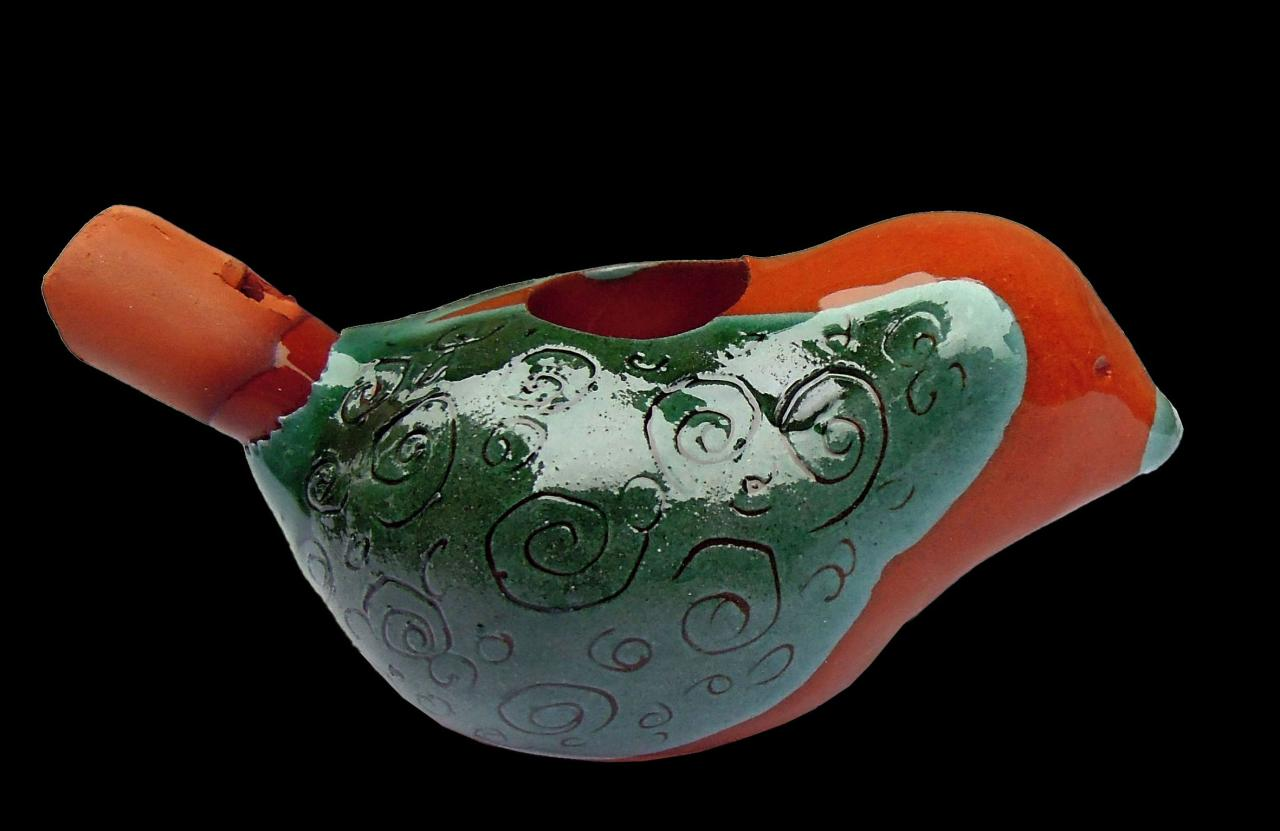 Oiseau Traditionnel Turquoise
